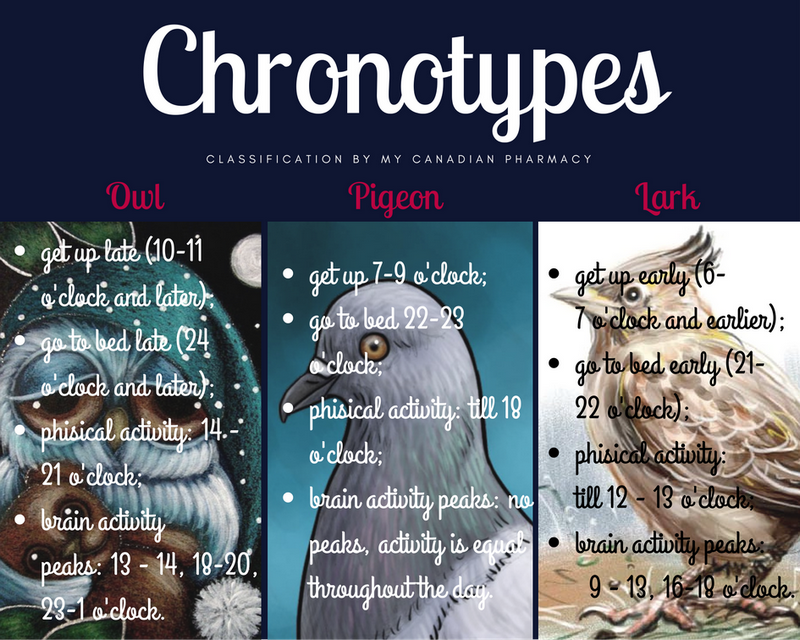 chronotypes classification